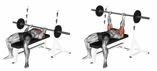 how do I calculate my max bench press