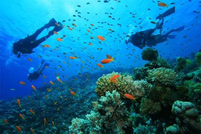 How Long Does it Take to Learn to Scuba Dive