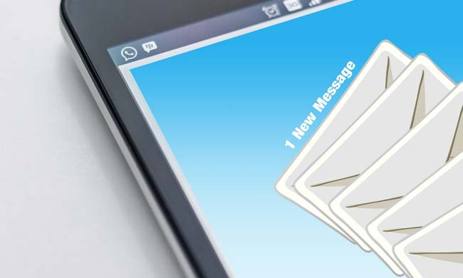 The information about reverse email