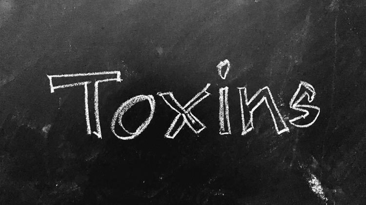How To Flush The Toxin From The Body