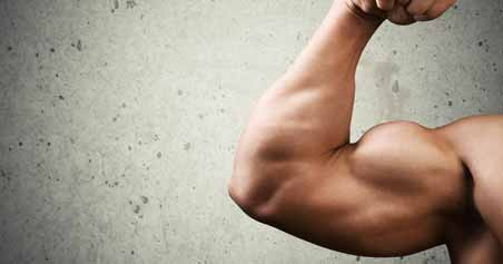 Factors To Determine How Long Does Muscle Growth Take