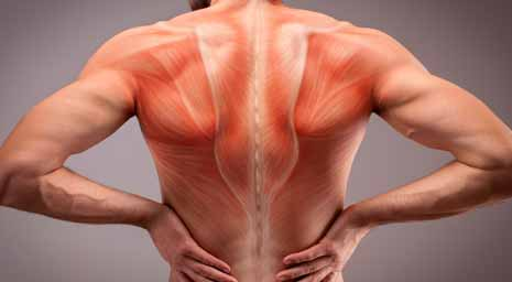 Natural Treatment For Muscle Cracking